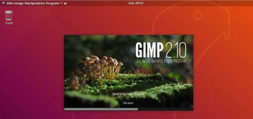 Access-GIMP2-10-Ubuntu18-04
