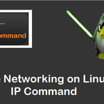 Manage-Networking-IP-Command-Linux