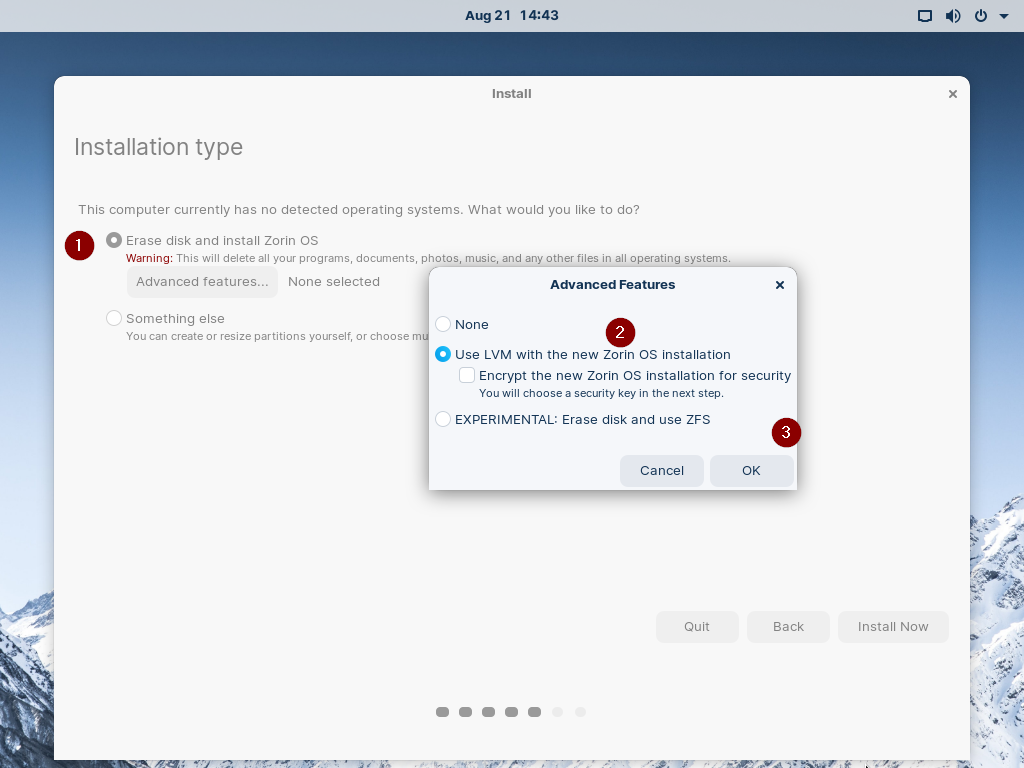 Installation-Type-Zorin-OS16
